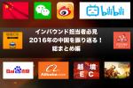 これで貴方も中国のネット通!中国ネット市場を丸裸@2016年